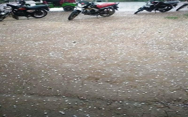 72-hour alert of meteorological department in UP rain on farmers