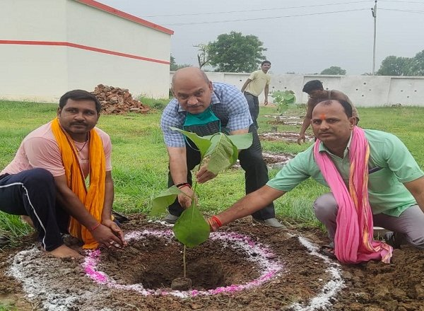 बांदा में संयुक्त विकास आयुक्त ने पौधरोपण का शुभारंभ किया
