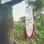कानपुर : शादी के 3 महीने बाद पेड़ से लटके मिले दंपति, हत्या-आत्महत्या में उलझी पुलिस